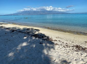 Big Property direct on the White Beach sand Moorea French Polynesia Island