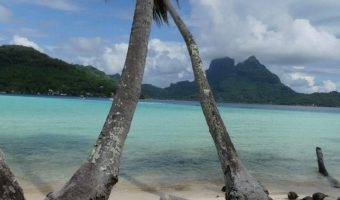 Private Island In Bora Bora , exclusif , Limited Company for sale